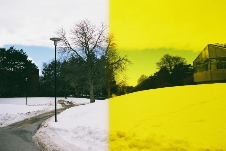 Half Yellow Filter