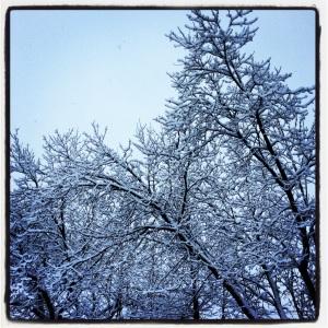 Always Winter